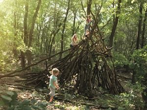 Cisco Vloeren Venray : Landal greenparks over 85 parks in the netherlands belgium